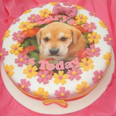 Picture of Puppy Cake